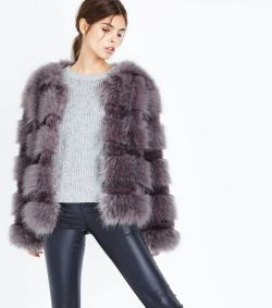 Fur 2